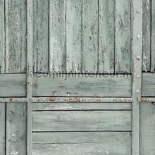 Stepwood grijsgroen nappes Kleurmijninterieur transparent