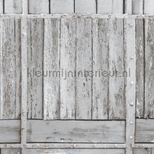 Stepwood nappes Kleurmijninterieur transparent