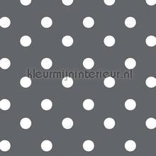 Donkergrijs met witte stippen nappes Kleurmijninterieur points