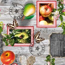 Holland fruit nappes Kleurmijninterieur transparent