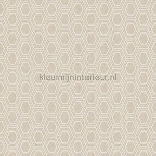 hexagons tafelzeil  11-BJ50 klassiek Kleurmijninterieur