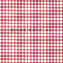 Kleine rode ruiten oilcloth Kleurmijninterieur firkant