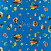 Luchtballonnen nappes Kleurmijninterieur transparent