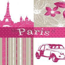 Parijs nappes Kleurmijninterieur transparent