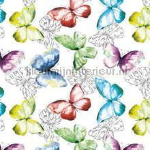 Vlinders nappes Kleurmijninterieur transparent