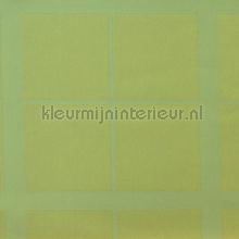 Grote groene ruiten oilcloth Kleurmijninterieur firkant