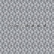 Geblokt oilcloth Kleurmijninterieur firkant