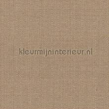 Bruine uni nappes Kleurmijninterieur couleurs unies