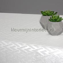 V visgraat tafelzeil Kleurmijninterieur modern