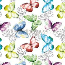 oilcloth transparent