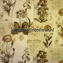 Wild flower cortinas Prestigious Textiles romántico