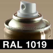 RAL 1019 Grijs-Beige carpaint Motip RAL hobby paint