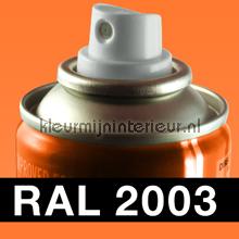 RAL 2003 Pastel Oranje carpaint Motip RAL hobby paint