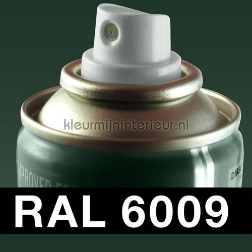 RAL 6009 Dennen Groen carpaint Motip RAL hobby paint