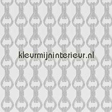 Kleine schakels zilver mat vliegengordijnen Vliegengordijnexpert Aluminium ketting Uni