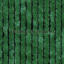 Kattestaart groen fliegenvorhang alle bildes