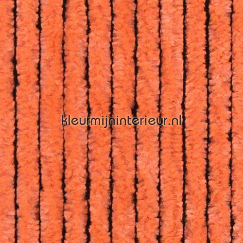 kattestaart oranje cortinas antimoscas oranje effen cats tail