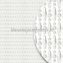 Koral transparant verspringend fly curtains synthetic thread